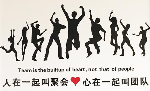 苏通文化:团队的合作才是前进的放心与发展的源泉